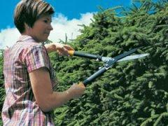 садовые ножницы ручные