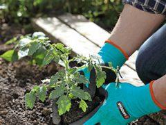 перчатки для защиты рук садовые Gardena