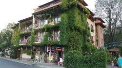 фасад дома оформить растениями как