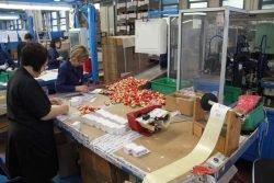 Gnutti Cirillo Tiemme упаковка автоматическая калибровка клапан безопасность цех завод фабрика Lumezzane Italy Лумедзане Италия