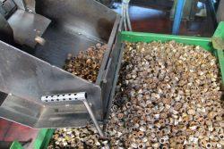 Gnutti Cirillo Tiemme Hatebur контейнер контрольный визуальный осмотр цех фабрика завод Odolo Italy Одоло Италия