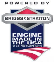 Briggs&Stratton Engine