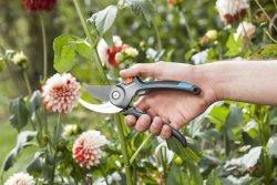 Gardena B M B/M секатор садовый обрезка цветы побег ветка молодой ветвь