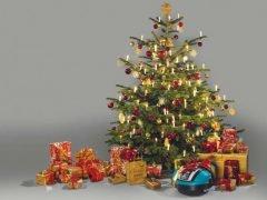Новогодний подарок Gardena идеи