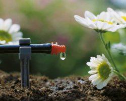 Gardena микрокапельный полив система орошение