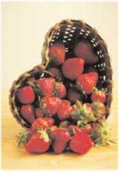 клубника описание сорт фото отзывы саженцы Фейерверк