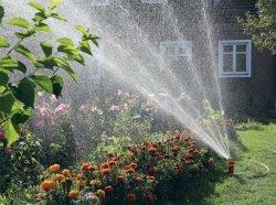 полив монтаж системы сад