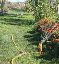 тройник полив в саду