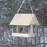 куда вешать кормушку для птиц