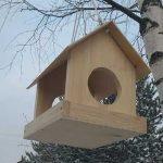 кормушка для птиц куда повесить