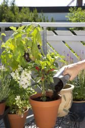 Многофункциональный кувшин Gardena вскапывание почва полив Домашнее садоводство комплект