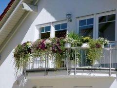 Gardena Гардена растения съедобный красота еда совет