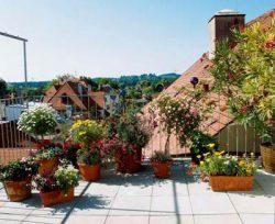 Рецепт Gardena цветочный вкусный полезный