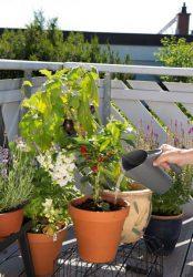 Gardena инструмент садовый Домашнее садоводство секатор лопатка перчатки кувшин