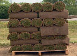 рулон рулонный газон экспресс метод создание