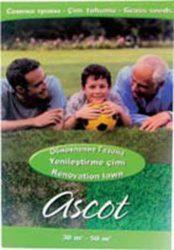 ремонт восстановить ASCOT обновление газона