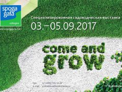 Gafa + Spoga 2017 выставка