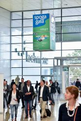 Koelnmesse выставка Gafa 2017 сентябрь