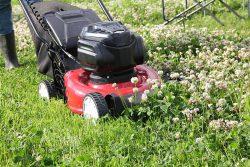 как заменить двигатель газонокосилке газонокосилки