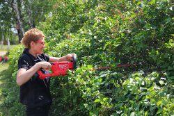 аккумуляторный кусторез CHT-0 садовые ножницы для живой изгороди