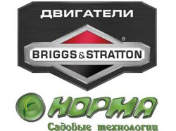 Норма Briggs Stratton импортер двигателей официальный Россия
