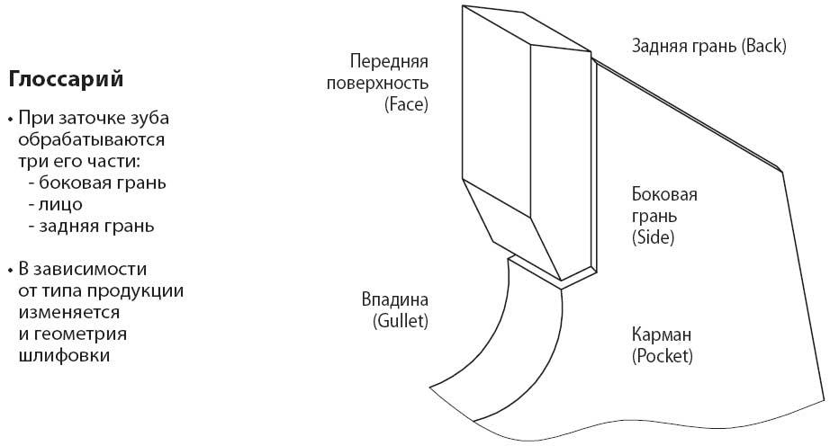 Пильный диск боковая задняя грань лицо заточка шлифовка