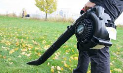 BHX2501 аккумулятор против бензина