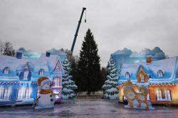 Бензопила Husqvarna 365 спилила главная новогодняя ель Кремлевская елка России 2017 2018