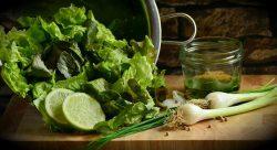 салат сорта какие лучше обзор