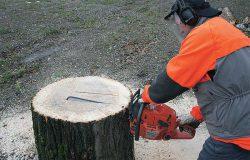 из массива древесины мебель технология
