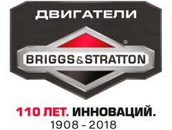 Я и Briggs&Stratton конкурс Бриггс энд Стрэттон 110 лет компании