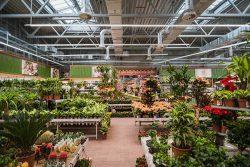 Оби Волжский Obi гипермаркет Садовый центр магазин нового поколения ремонт дача