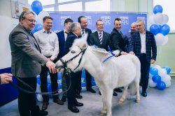 Pferd производство завод в Санкт-Петербурге России круги борфрезы