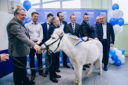 Pferd Пферд производство в Санкт-Петербурге