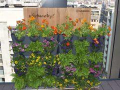 Gardena NatureUp! вертикальное озеленение концепция система