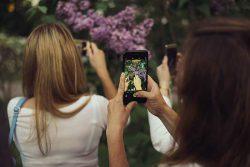 Gardena Мой сад реалити шоу второй сезон 23 мая 2018 сирингарий Ботанический сад МГУ
