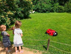 Husqvarna Automower 310 газонокосилка робот Аптекарский огород Ботанический сад МГУ дуб Гофман
