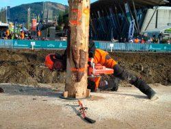 Чемпионат мир вальщик лес 2018 валка дерева