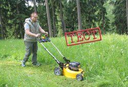 DeWALT DCM546 газонокосилка отзывы аккумуляторная