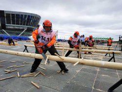 Чемпионат России Лесоруб вальщиков леса