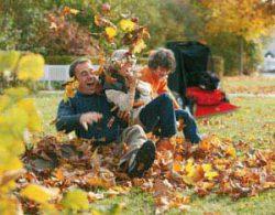 осенние листья уборка воздуходувка