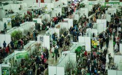 Выставка продажа Петербургская зелёная неделя 2019 Санкт Петербург 18 21 25 28 апреля