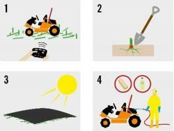 борщевик борьба способы борьбы покос триммером газонокосилкой