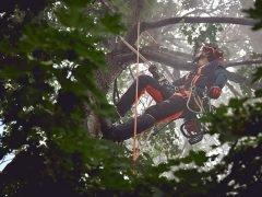 Husqvarna Чемпионат Европа арбористика 2019 European Tree Climbing Championships ETCC генеральный спонсор