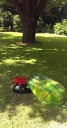 Husqvarna Automower 310 газонокосилка робот Хускварна Божья коровка Ботанический сад МГУ Аптекарский огород