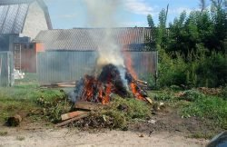 Об утверждении Порядка использования открытого огня и разведения костров