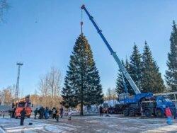Главная новогодняя ель России 2020 2021 бензопила Husqvarna 572 XP Хускварна