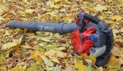Efco SA 2500 Бензомоторный садовый пылесос-воздуходувка