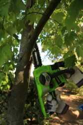 Greenworks GD24CS30 цепная пила отзывы